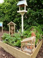 Domki, szklarenka i karmnik dla ptaków