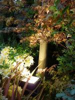 Lampy odpowiednio użyte, stworzą o zmroku wspaniały i magiczny krajobraz