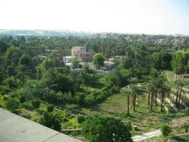 Assuan - widok z tamy na bujną roślinność