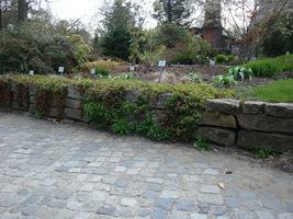 Ogród skalny