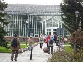 W ogrodzie znajduje się 10 szklarni (około 3.000 m² powierzchni), zawierających około 4600 roślin