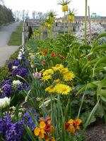 Okolice ogrodów tarasowych z pięknymi kwietnikami