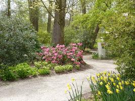 Różnorodne ogrody, pomysły i rozwiązania pozwalają nam zdecydować się na konkretny styl