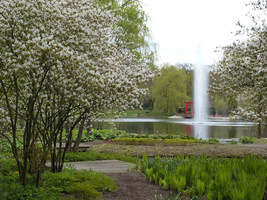 Ogromna fontanna w pobliżu szklarni tropikalnych