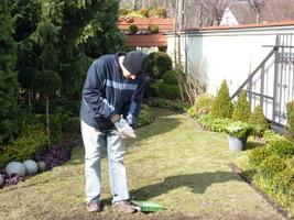 Do pierwszego nawożenia trawnika używamy nawozu z dużą dawką azotu