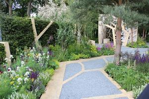 The Times Eureka Garden we współpracy z Royal Botanic Gardens, Kew, projekt Marcus Barnett