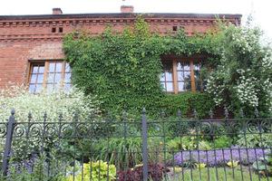 Front domu porośnięty pnączami