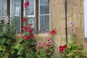 Takie romantyczne domki z ogródkami pojawiły się w czasach elżbietańskich