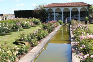 W ogrodzie zgromadzono 700 różnych odmian róż