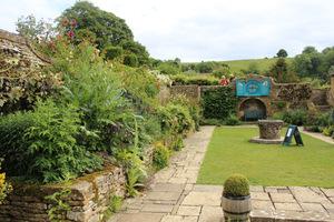 Widok na prostokątny trawnik i jedno z najpiękniejszych miejsc w ogrodzie