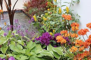 Kolorystyka roślin nie jest tak ważna, bo w dużej mierze zależy od osobistych upodobań każdego właściciela ogrodu