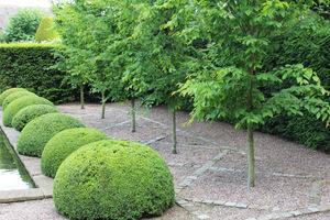 Moda na surowe ogrody minimalistyczne przegrała nieco w rywalizacji o styl ogrodowy