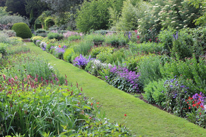 Efektowny ogród dla kolekcjonera roślin
