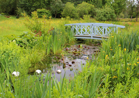 Mostek jak w ogrodzie Moneta