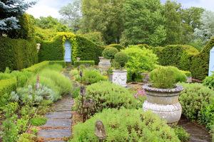 Widok ogólny na ogród ziołowy