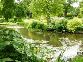 Wodą można upiększyć swój ogród i zapewnić doskonałe miejsce do relaksu czy spotkań z przyjaciółmi