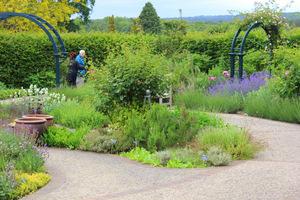 Ogród ziołowy w Wisley RHS Garden w Surrey w Anglii, został zaprojektowany przez Lucy Huntingdon i otwarty w lipcu 2003 roku