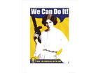 Sb0116princess leia we can do it po