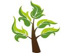 Drzewo 23